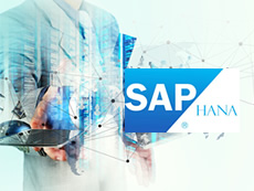 SAP on HANA Migration Service